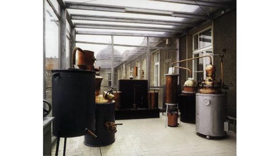 zuckermuseum-wintergarten